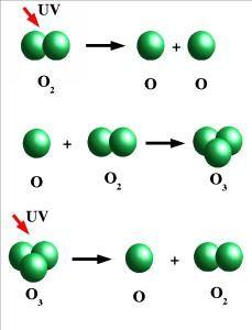modificările alotrope ale oxigenului nu diferă