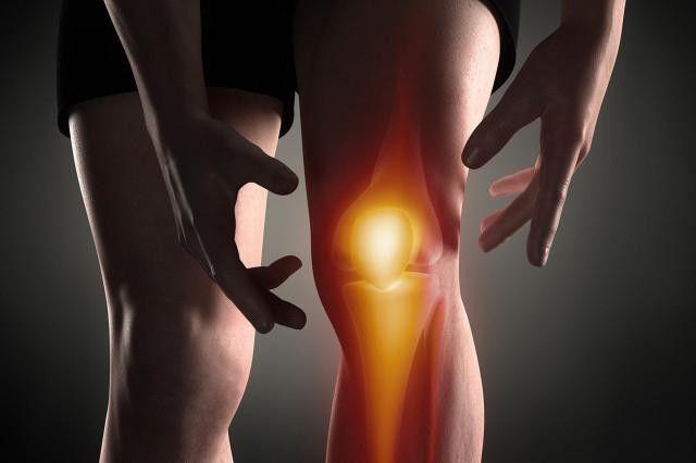o scurtă anatomie a genunchiului