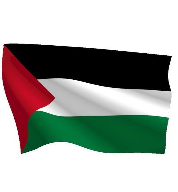 Statul Palestinei
