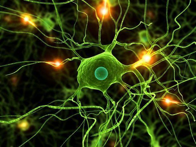 sindromul asteniei cerebrale