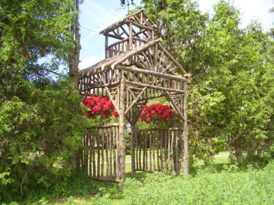 arbori din proiectele de busteni