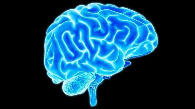 blocul oculomotor și nervii abducți