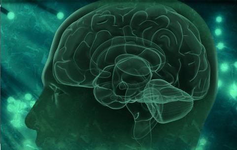 sindromul hidrocefalic