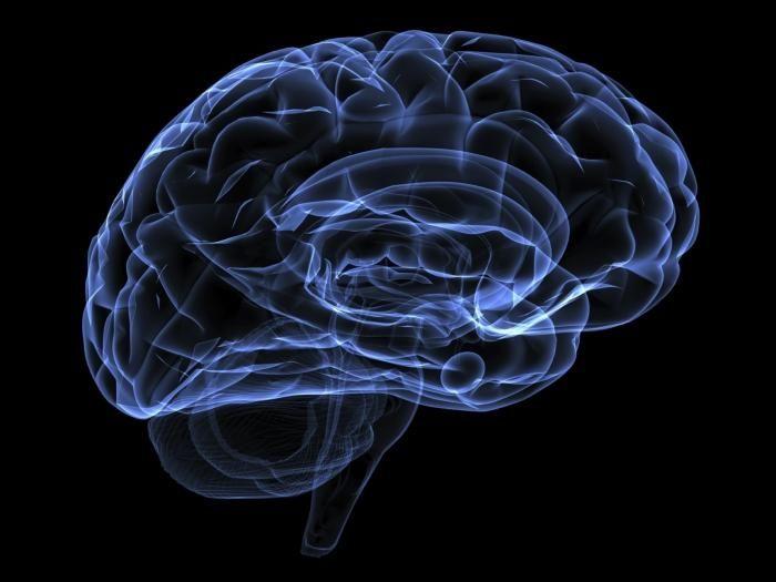 sindromul hidrocefalic la adulți