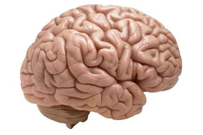 cerebrală arahnoidită