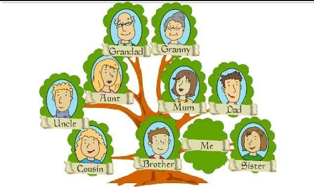 copil membru al familiei