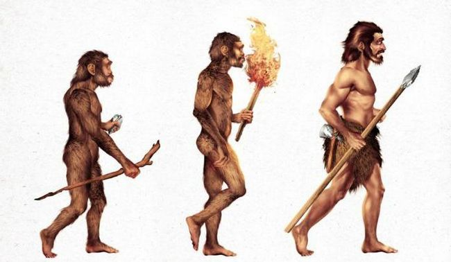 pentru evoluția omului se caracterizează prin biologie
