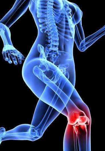 genunchi durere din interior