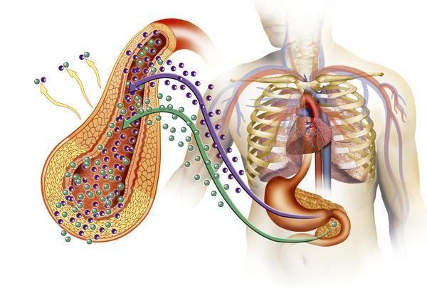 insulino-dependent de diabet zaharat