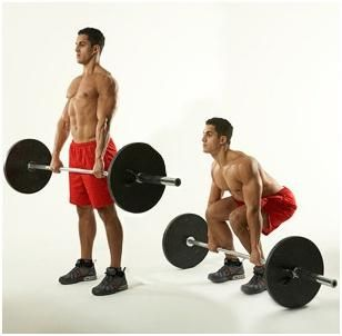 Ce este supraviețuirea și ce fel de grupare musculară se dezvoltă?