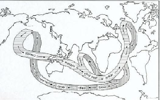 fluxurile termohaline
