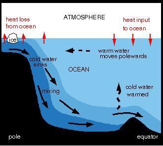 circulația apei în ocean