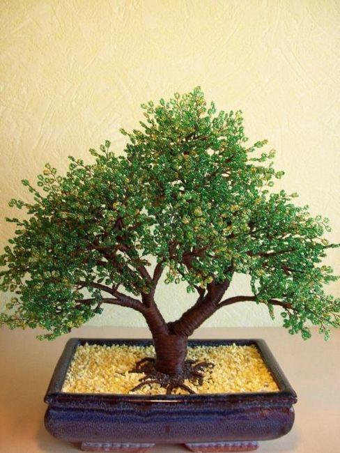 Copacul de bani al margelelor este un amulet și un simbol al bunăstării financiare în casa ta!
