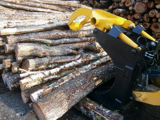 tehnologie a industriilor din industria lemnului