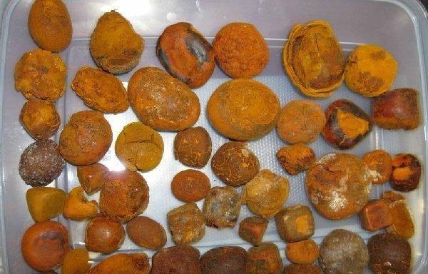 Dieta cu pietre in vezica biliara: principii de baza