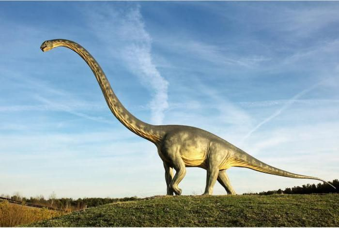 dinozaurii din perioada Jurassic Foto