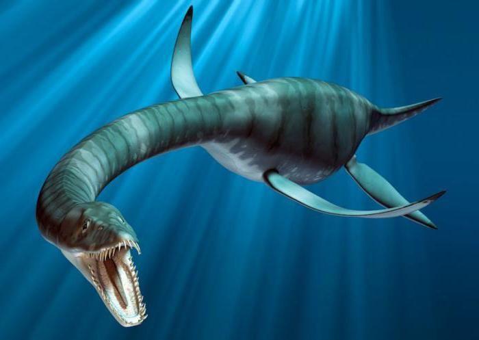 dinozaurii și animalele din perioada jurasică