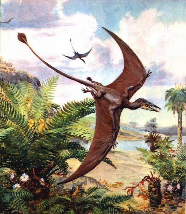 zboară dinozaur din perioada jurasică