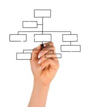 Structura organizatorică divizată a întreprinderii