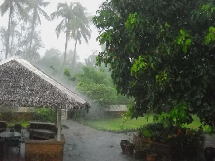 ploaie ploioasă
