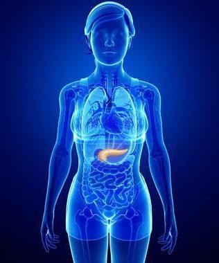 enzimele pancreatice descompun grăsimea