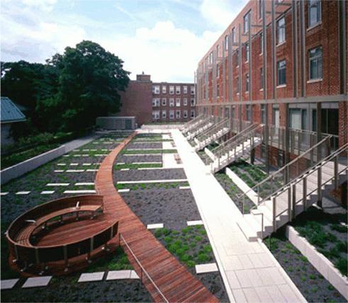 Universitatea Harvard Statele Unite