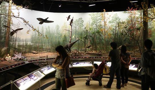 unde există un muzeu de dinozauri