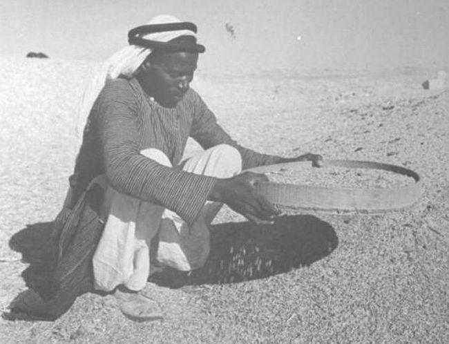 țară în care trăiesc arabii