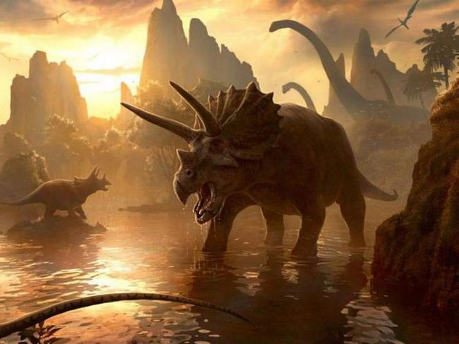 carnivore dinozauri