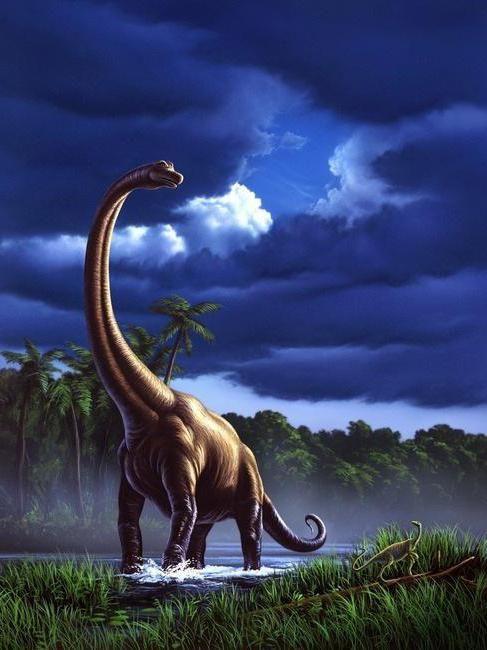 dinozaurii răpitori și ierbivore