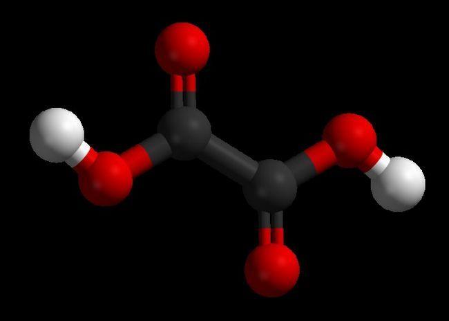 Acid clorogenic pentru scăderea în greutate