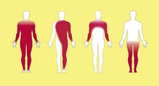 reactivitatea imunologică a organismului