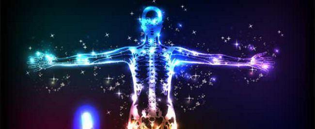factori ai reactivității organismului