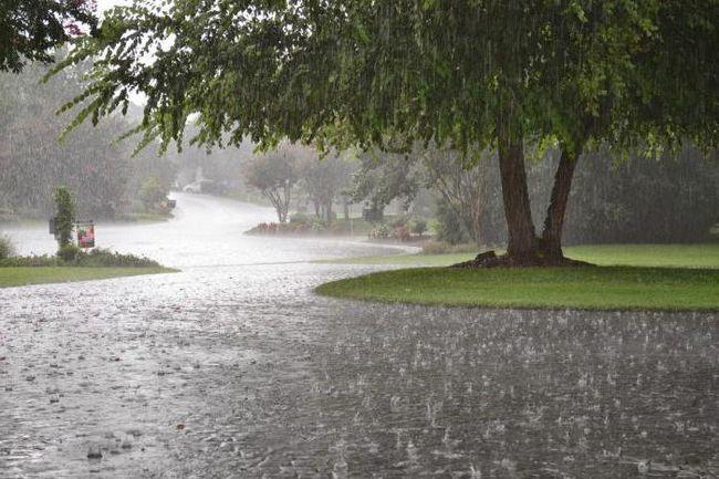 puzzle-uri despre ploaie