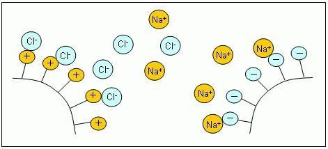 schimbarea rășinii schimbătoare de ioni