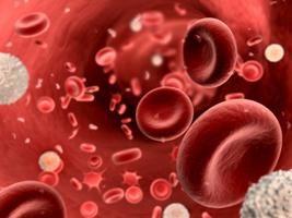 din ce constă plasma sanguină