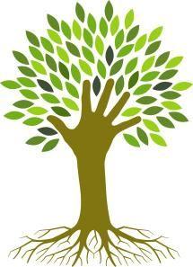 ecologia și managementul naturii