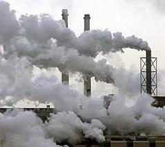 subiectul ecologiei și sarcinile ecologiei