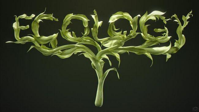 principalele sarcini ale ecologiei