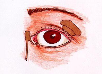 Glandele de secreție internă includ glandele lacrimale