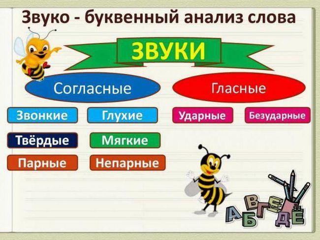 analiză alfabetică