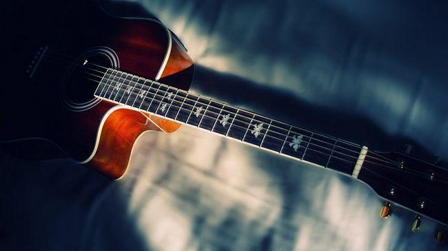 Cum se instalează o chitară electronică: instrucțiuni pas cu pas