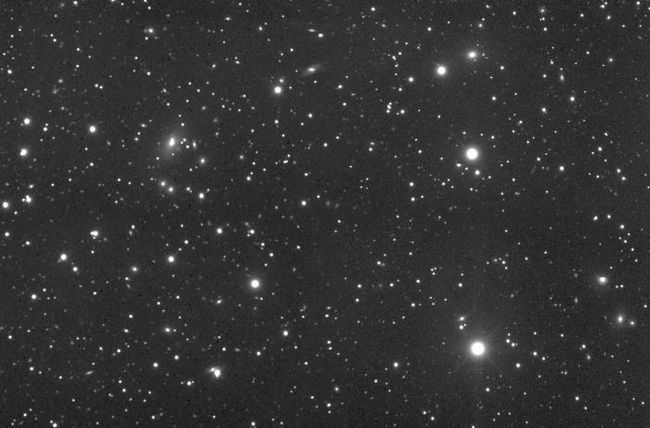 stele ale constelației Pegasus