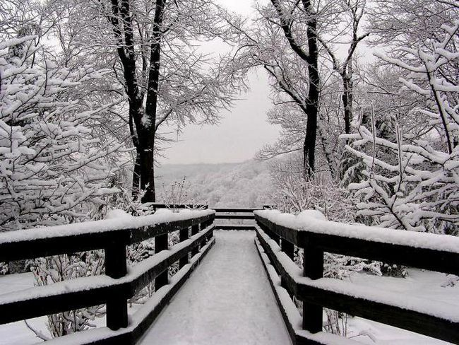 toamna, iarna