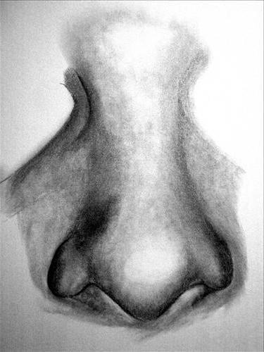 cum să atragă un nas