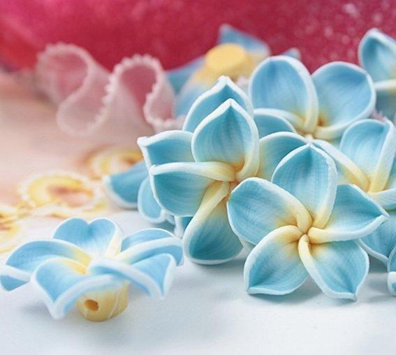 Cum sa faci flori din argila polimerica? Maestru de clasă pentru fabricarea unui pandantiv de flori.