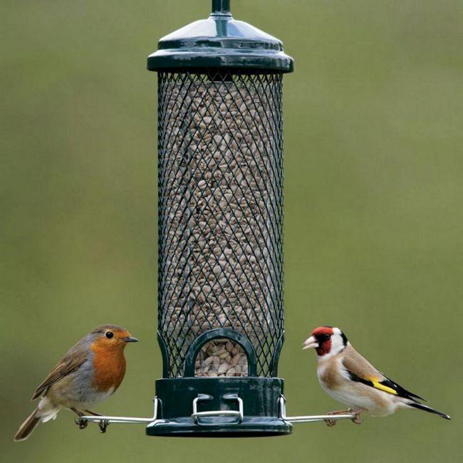 Cum sa faci alimentatoare de pasari pentru pasarile tale