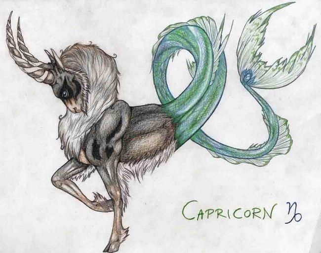 Capricorn Zodiac Sign Earth