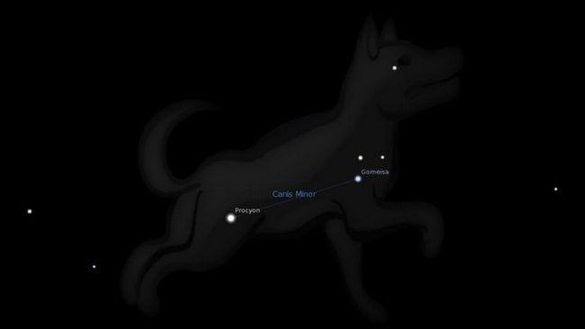 Star Procyon