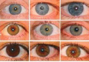 culoarea ochilor parintilor si copilului